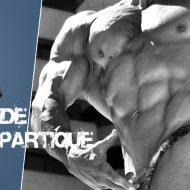 Acide aspartique musculation