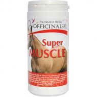 Aliment muscle