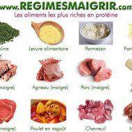Aliments riches en protéines musculation