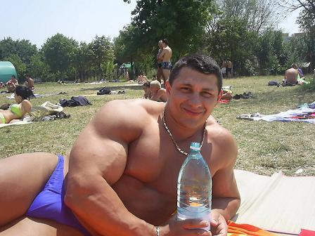 big muscle bears