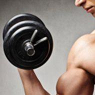 Cardio training musculation
