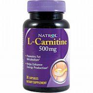 Carnitine musculation