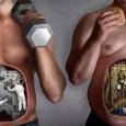 Comment manger pour prendre du muscle