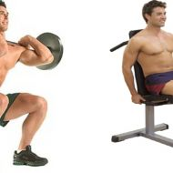 Exercice de base musculation