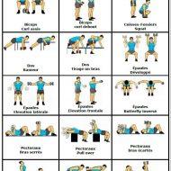 Exercice de musculation avec haltère