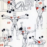 Exercice de musculation epaule