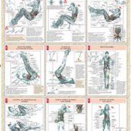 Exercice de musculation pour les abdos