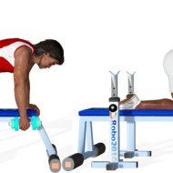 Exercice dos musculation
