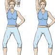 Exercice muscler les bras