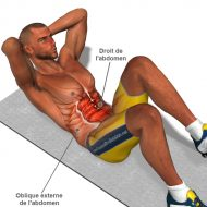 Exercice musculation abdominaux homme