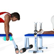 Exercice musculation dorsaux