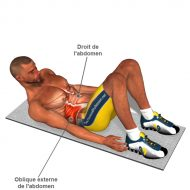 Exercice musculation oblique