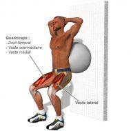 Exercice musculation quadriceps