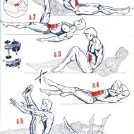 Exercices musculation abdos