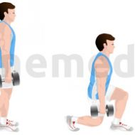 Exercices musculation cuisses