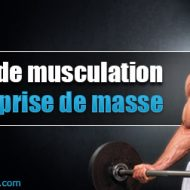 Forum musculation prise de masse