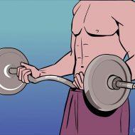 Gagner en muscle rapidement
