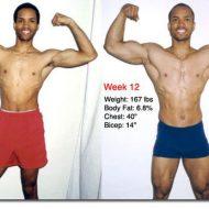 Gain de muscle