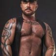 Gay bear muscle