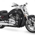 Harley davidson muscle