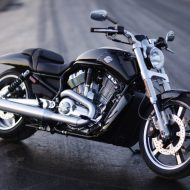 Harley v rod muscle
