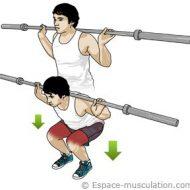 Le squat musculation