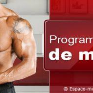 Meilleur programme musculation prise de masse