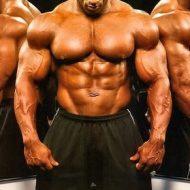 Methode pour prendre du muscle