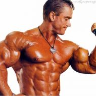Muscle bodybuilding