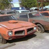 Muscle car sale