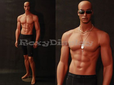 muscle mannequin