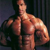 Muscle seche