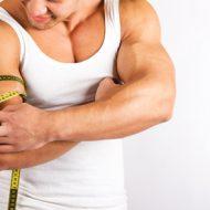 Muscler des bras