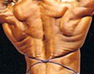 Muscler dorsaux
