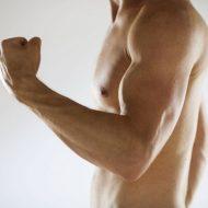 Muscler le bras