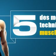 Muscler les bras rapidement