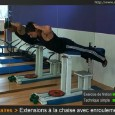 Muscler lombaires