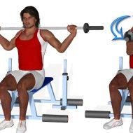 Musculation abdos
