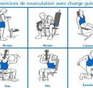 Musculation débutant programme