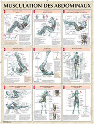 musculation des abdos