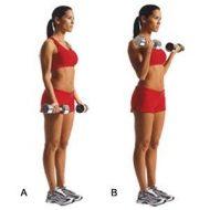 Musculation des bras femme