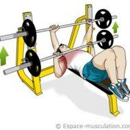 Musculation développé couché
