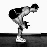 Musculation dos haltères