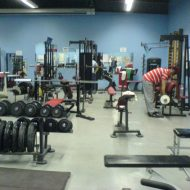 Musculation en salle