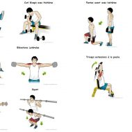Musculation et exercices de musculation