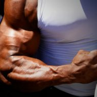 Musculation gros bras