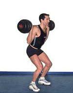 Musculation jambes