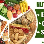Musculation nutrition
