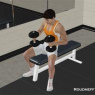 Musculation pectoraux avec haltères