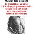 Musculation prise de volume rapide